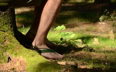 20. 7. 2019   Odpoledne pro zdravé nohy